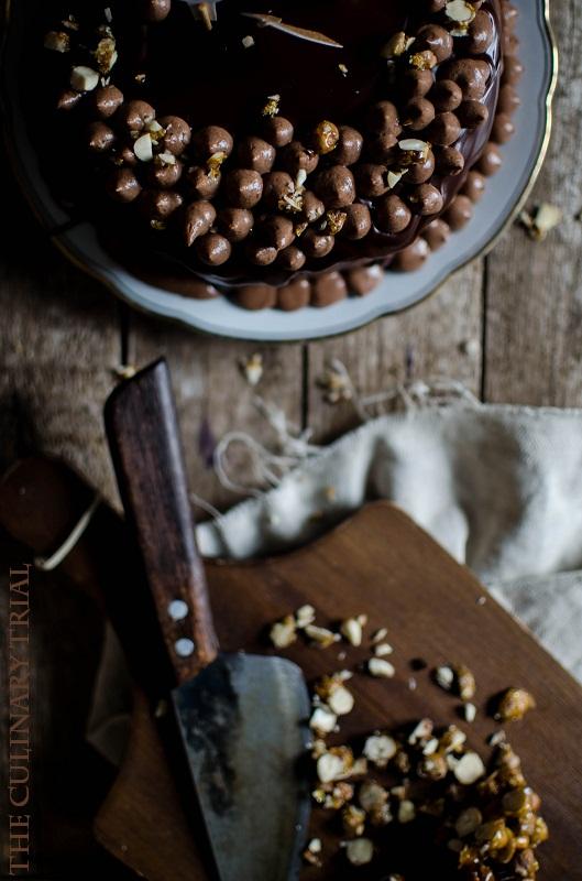 Nutellamoussetorte_TheCulinaryTrial5
